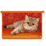 Папка д/тетрадей (труда) А4 ОНИКС ПТР-115 пластик.2отд/молния School cat 56722